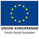 Logo-FSE-quadri_0.jpg