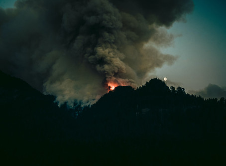 California Wildfires: How to Help