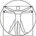 leonardo-da-vinci-vitruvian-man-vector-1