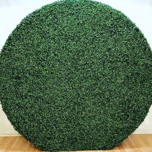 BOXWOOD ROUND WALL