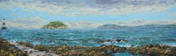 Penmon Point, Puffin island and the Great Orme 14x40cm