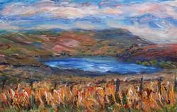 Top Swinshaw Reservoir