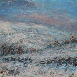 Snowy Shire Hill