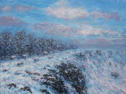 Along the snowy edge 48x 68cm_