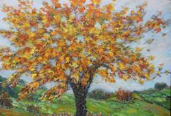 Autumn Light  112x152cm.jpg