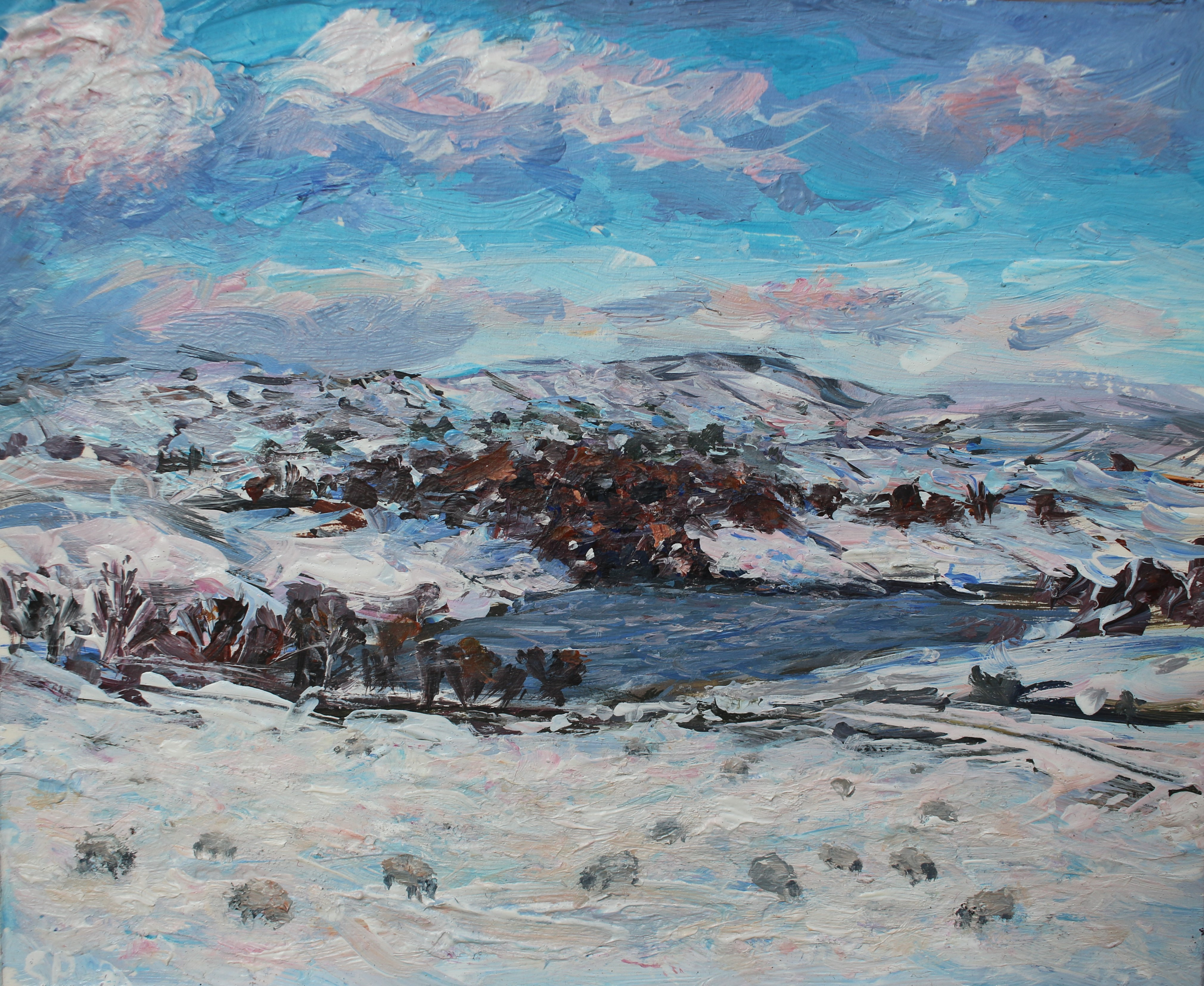 Snowy Swinshaw reservoir