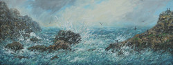 Cormorants and Gulls with crashing waves