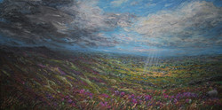 From Curber 60x110cm