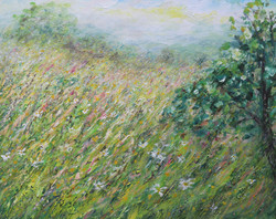 Summer Meadow with Horses