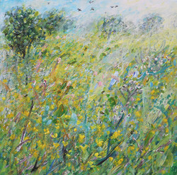 Buttercups, Cow parsly,Crows and Bees 50x50cm.jpg