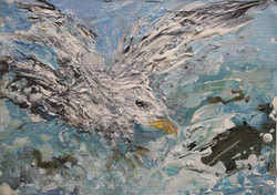 Seagull study 15x20cm (2)