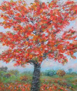 Autumn red 65 x75  cm Acrylic