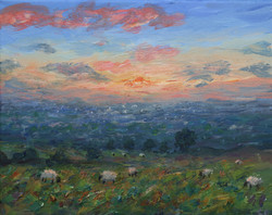 Sunset from the fields near Coombes edge - Copy.jpg