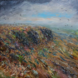 A clearing sky with crows over Coombes Edge