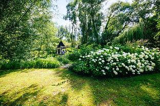 Taubenblau_Garten.jpg