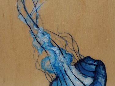 Jellyfish Study in Blue