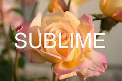 8. SUBLIME, 2015