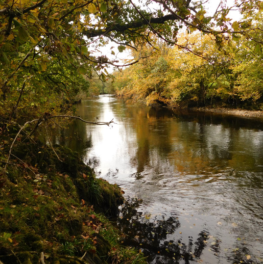 The river Irfon 2