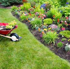 2 hours of 24 Chores labor (eg. pruning, weeding, planting, brush clearance, wood cutting/splitting)