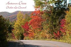 autumndrivelaccanardweb