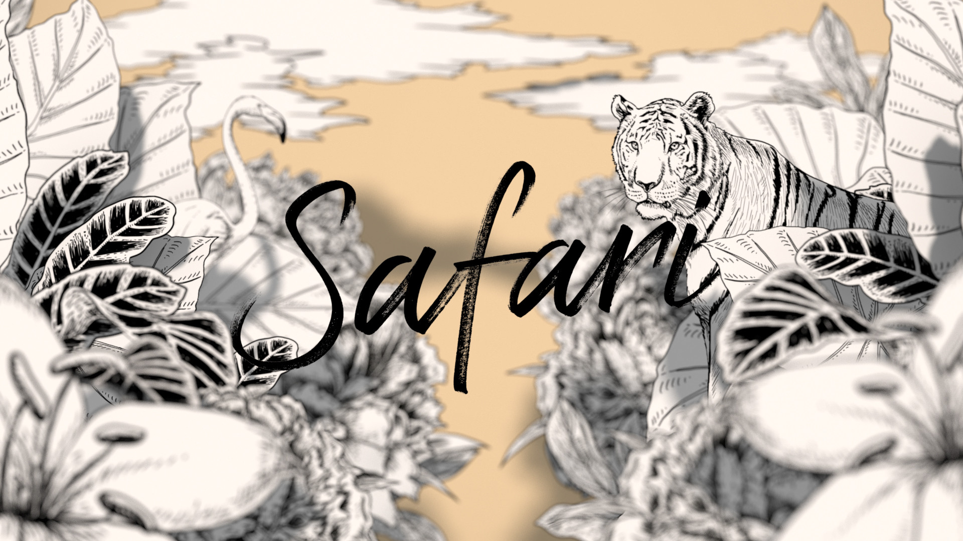 TOD'S - Safari - Intro.jpg