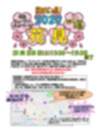 花見チラシ2020.03.28.png
