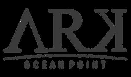 Ark Ocean Point Festa no Barco