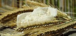 flour-1528338.jpg