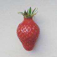 The tastiest strawberry I know.jpg