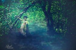 In the Fog of the Fallen Apple Tree