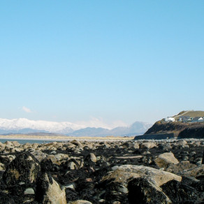 Rockpooling in Snowdonia