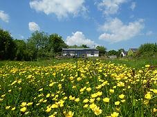 Wheatland Farm