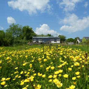 Review of Wheatland Farm, Devon