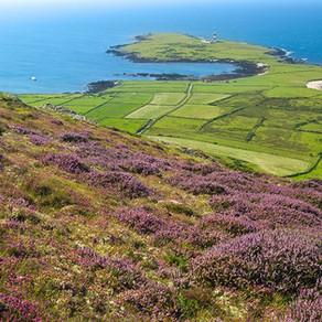A trip to Bardsey Island, Llŷn - Ynys Enlli