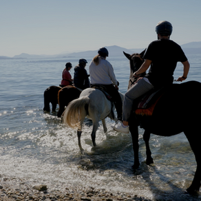 Local activities in Pelion, Greece