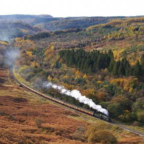 Car-free Guide to North York Moors National Park