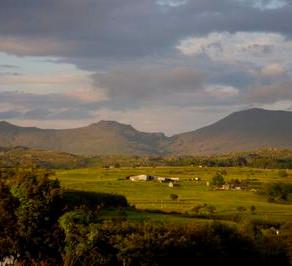 Local Attractions in Llŷn