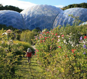 Local Attractions in Cornwall
