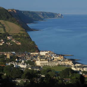 Local visitor attractions in East Devon