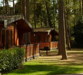 Places to stay in the New Forest National Park