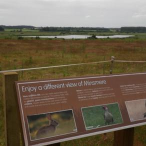 Birdwatching in the Suffolk Coast & Heaths AONB