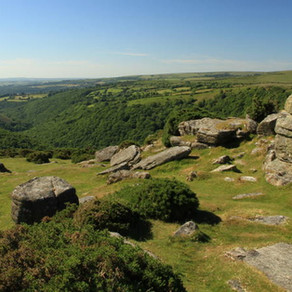 Local Attractions in Dartmoor National Park