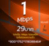 โปรเน็ตทรู 1Mbps 29บาท พิเศษ.jpg