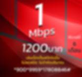 โปรเน็ตทรูมาราธอน 1Mbps 1200บาท.JPG