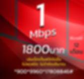 โปรเน็ตทรูมาราธอน 1Mbps 1800บาท.JPG