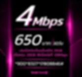 โปรเน็ตทรูรายเดือน 4Mbps 650บาท.JPG