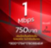 โปรเน็ตทรูมาราธอน 1Mbps 750บาท.JPG