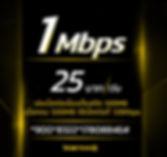 โปรเน็ตทรูรายวัน 1Mbps 25บาท.jpg