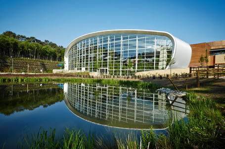 TRIED & RESTED: Center Parcs, Woburn Forest