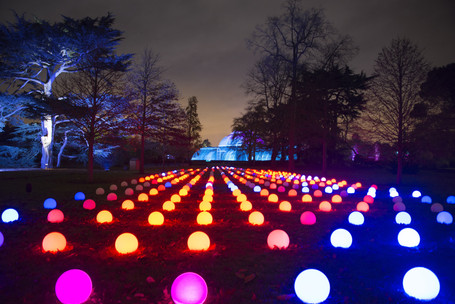 DISCOVER: Christmas At Kew